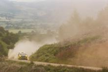 Sebastian Perez / Gary McElhinney - Ford Fiesta