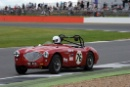 Silverstone Classic 2016, 29th-31st July, 2016,Silverstone Circuit, Northants, England. Harris-Knight Austin-Healey 100Copyright Free for editorial use only
