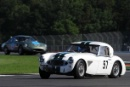 Silverstone Classic 28-30 July 2017At the Home of British MotorsportRAC Tourist Trophy for Pre 63 GTKNIGHT Richard, WOOLMER Richard, Austin HealeyFree for editorial use onlyPhoto credit –  JEP