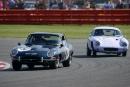 Clark/McCaig Jaguar E-type