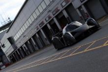 Fergason - RAW Ligier